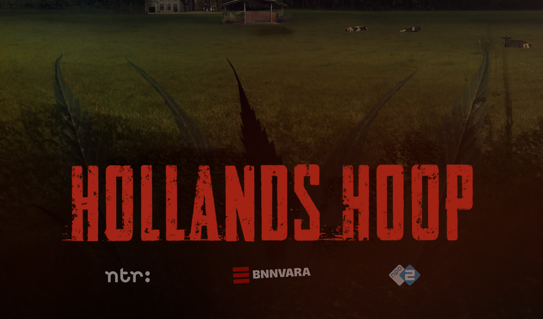 Compositing interactieve website Hollands Hoop